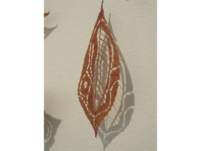 amoebic-leaf-1