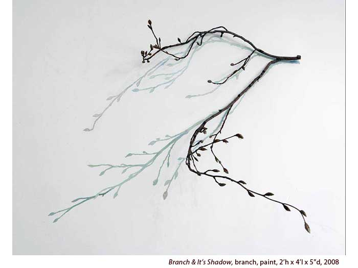 Branch-and-Shadow-2