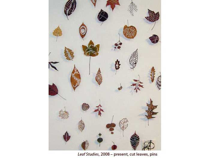 Leaf-Studies-3