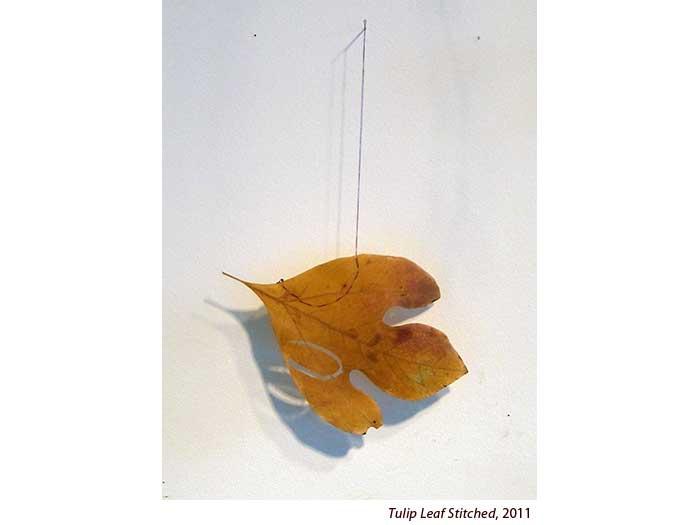 tulip-leaf-stitched-2