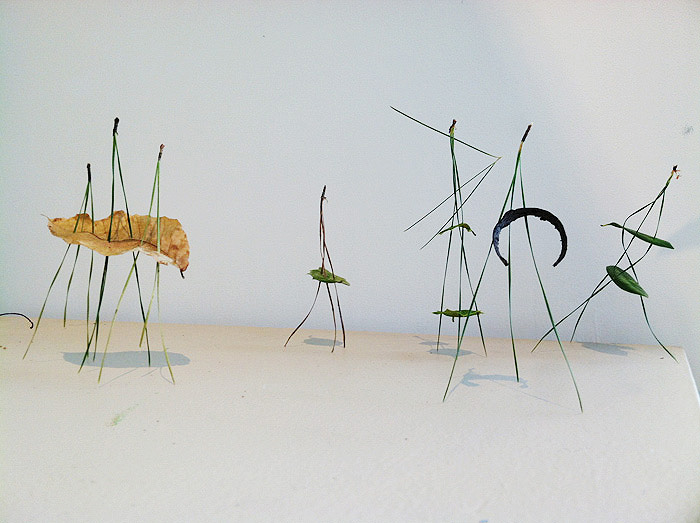 1.Pine-Needle-Circus33